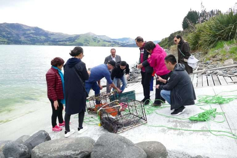Pipi Journeys Akaroa - authentic New Zealand experience and local connection - fishing (5)