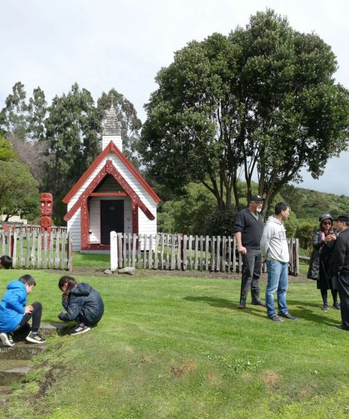Pipi Journeys Akaroa - authentic New Zealand experience and local connection (13)