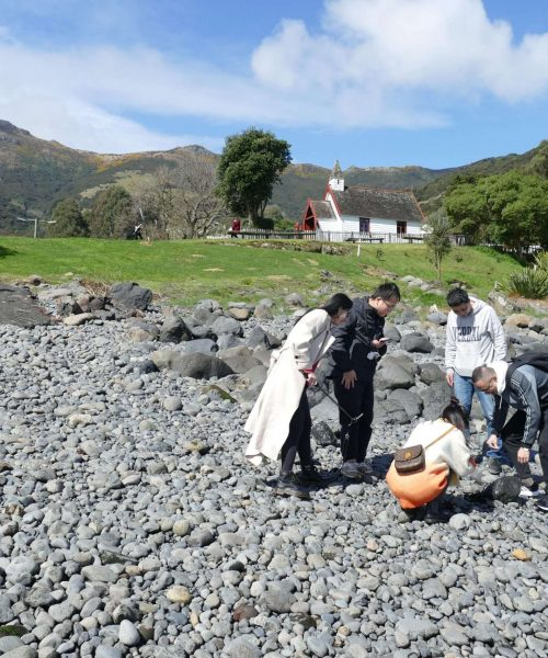 Pipi Journeys Akaroa - authentic New Zealand experience and local connection - fishing (14)