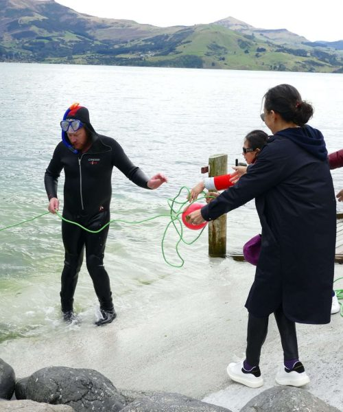 Pipi Journeys Akaroa - authentic New Zealand experience and local connection - fishing (3)