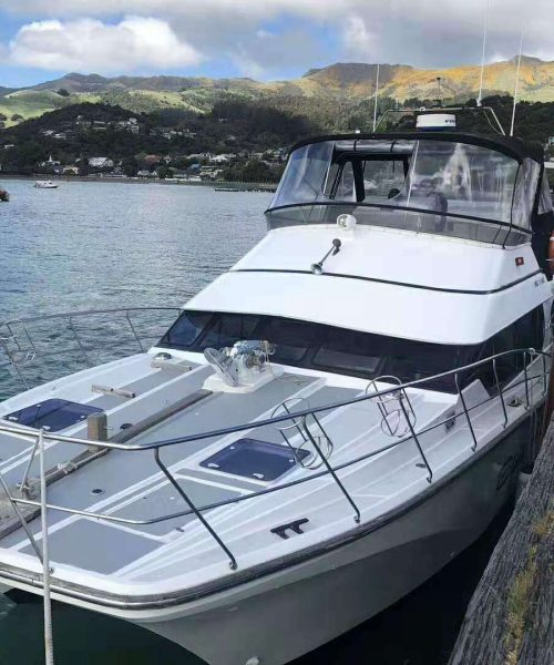 Pipi Journeys Akaroa - authentic New Zealand experience and local connection - fishing (6)