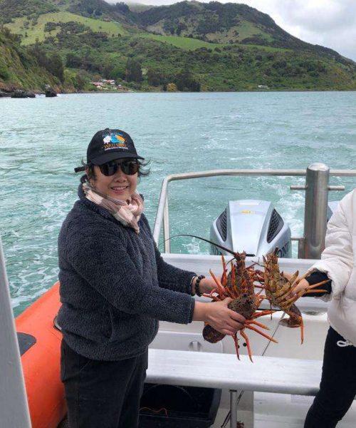 Pipi Journeys - fishing - harbour tour Akaroa Banks Peninsula New Zealand (2)