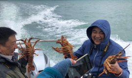 Pipi Journeys - fishing - harbour tour Akaroa Banks Peninsula New Zealand (4)