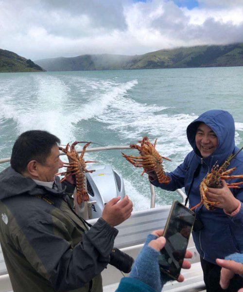 Pipi Journeys - fishing - harbour tour Akaroa Banks Peninsula New Zealand (6)