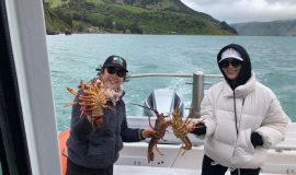 Pipi Journeys - fishing - harbour tour Akaroa Banks Peninsula New Zealand (8)